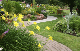 Landscaping image homepage